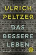Das bessere Leben: Roman