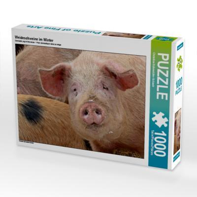 Weideschweine im Winter (Puzzle)