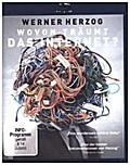 Wovon träumt das Internet?, 1 Blu-ray