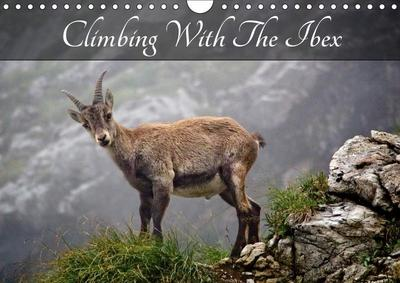 Climbing With The Ibex (Wall Calendar 2019 DIN A4 Landscape)
