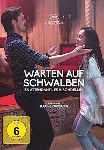 Warten auf Schwalben, 1 DVD