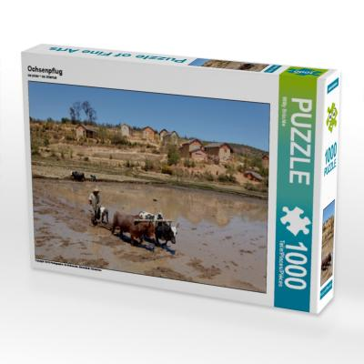 Ochsenpflug (Puzzle)