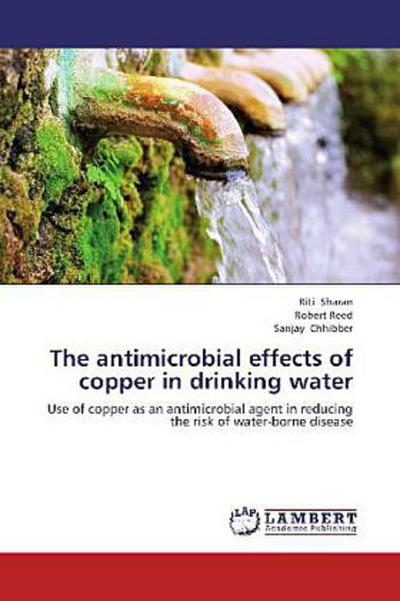 The antimicrobial effects of copper in drinking water: Use of copper as an antimicrobial agent in reducing the risk of water-borne disease