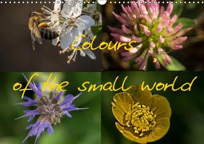 Colours of the small world (Wall Calendar 2019 DIN A3 Landscape)