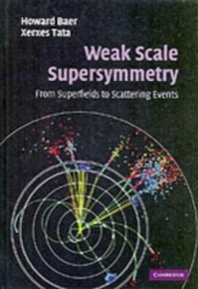 Weak Scale Supersymmetry