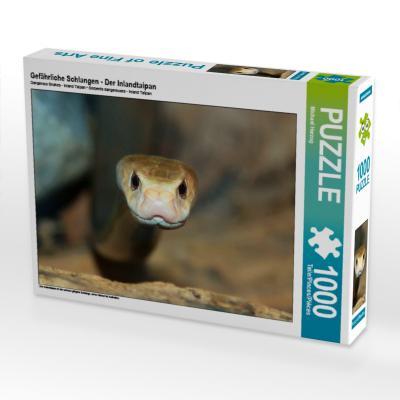 Gefährliche Schlangen - Der Inlandtaipan (Puzzle)