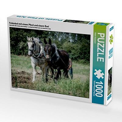 Feldarbeit mit einem Pferd und einem Esel (Puzzle)