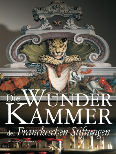 Die Wunderkammer der Franckeschen Stiftungen