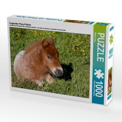 Liegendes Pony-Fohlen (Puzzle)