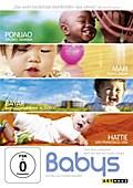 Babys, 1 DVD (OmU)
