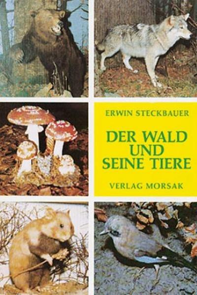 Der Wald und seine Tiere: Wald und Wildtiere im Zwieseler Waldmuseum