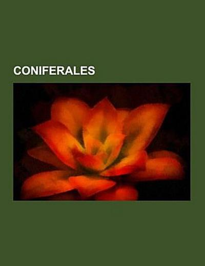 Coniferales