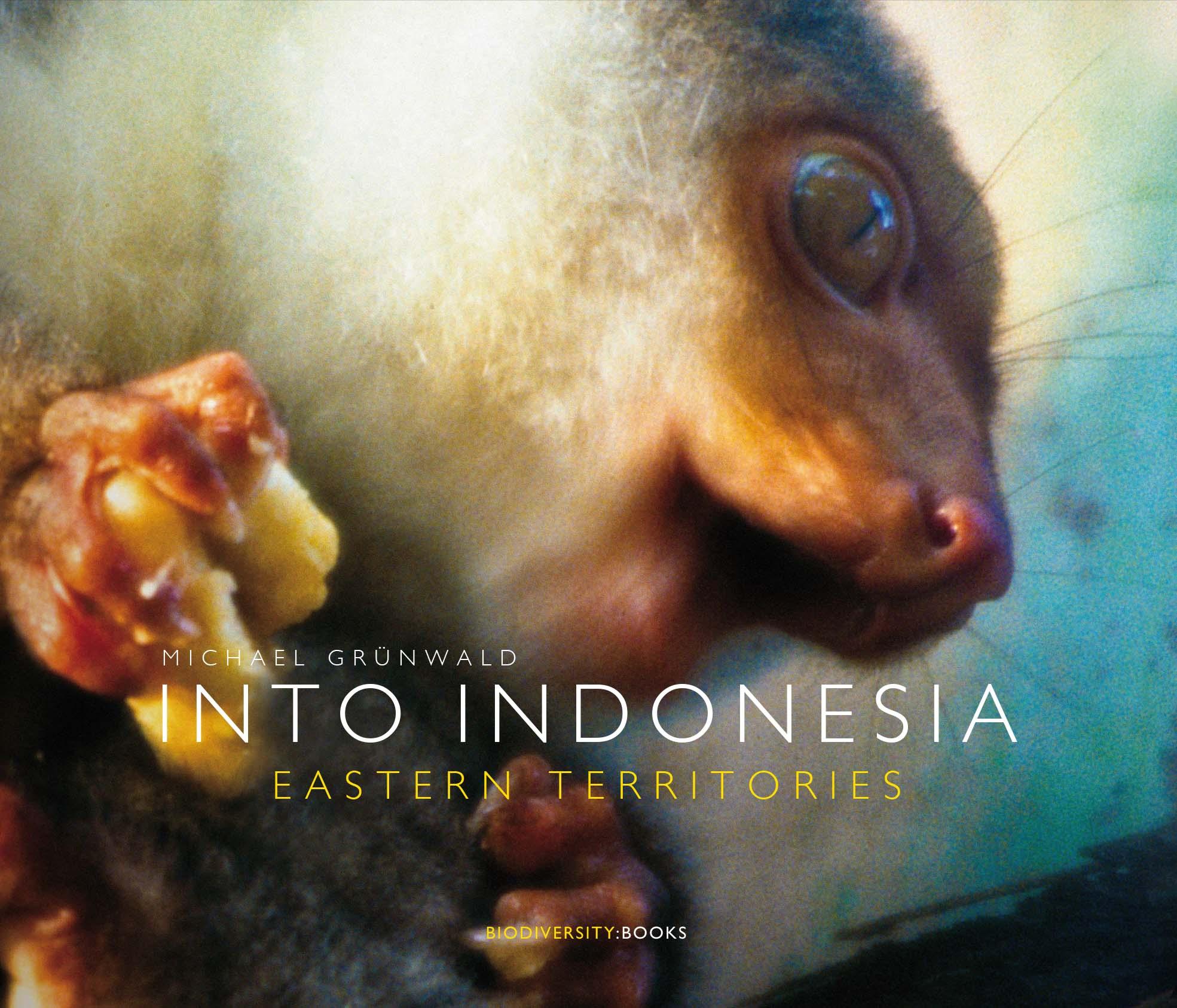 INTO INDONESIA. Eastern Territories