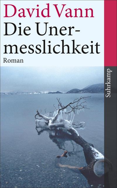 Die Unermesslichkeit: Roman (suhrkamp taschenbuch)