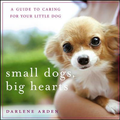 Small Dogs, Big Hearts