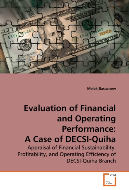 Evaluation of Financial and Operating Performance: A Case of ... 9783639261134