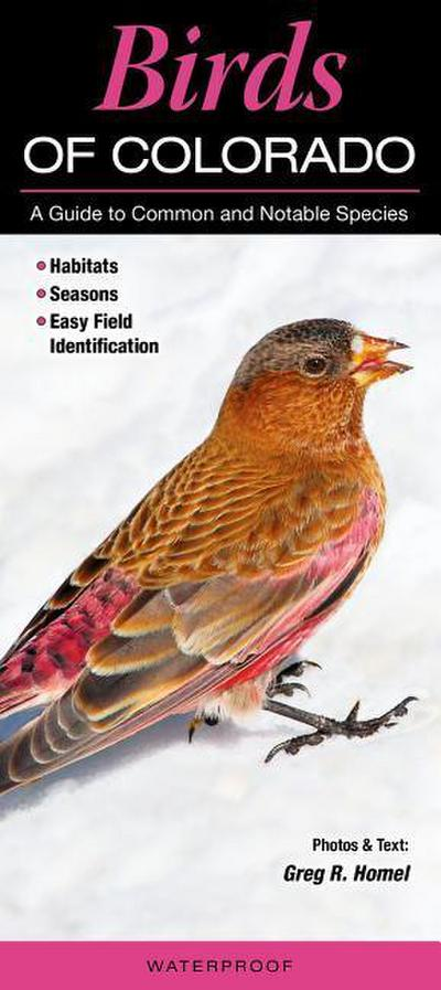 Birds of Colorado: A Guide to Common and Notable Species