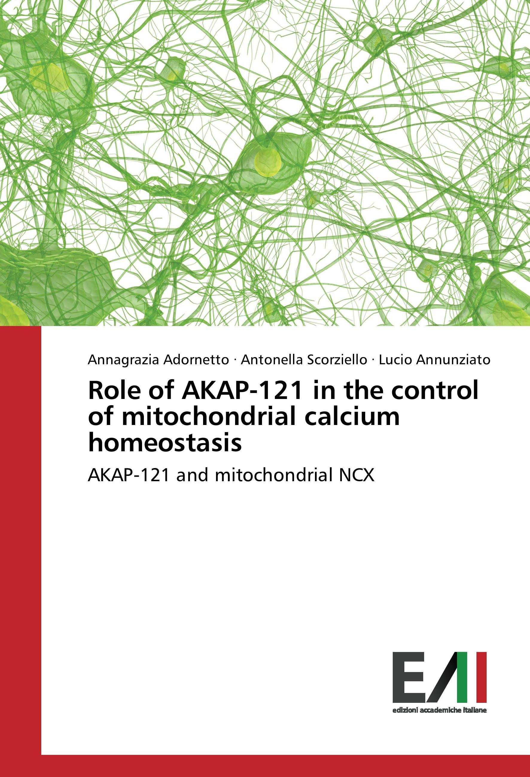 Role of AKAP-121 in the control of mitochondrial calcium hom ... 9783330778511