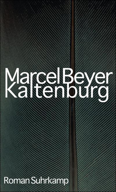 Kaltenburg: Roman