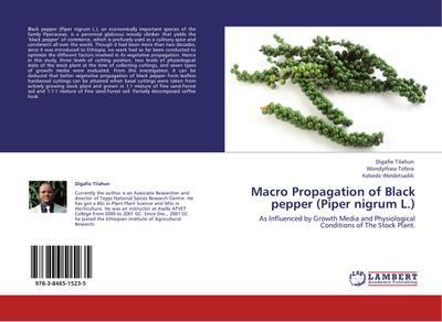 Macro Propagation of Black pepper (Piper nigrum L.)