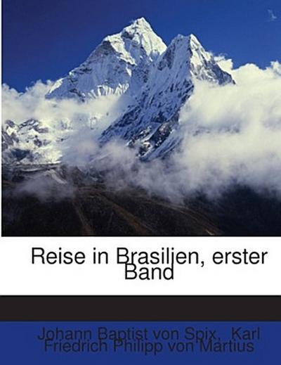 Reise in Brasilien, erster Band