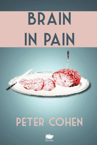 Brain in Pain: A Wounded Healer's Heart-Wrenching and Heart-Warming Guide to Schizophrenia