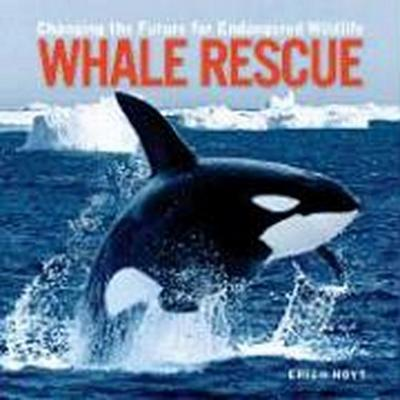 Whale Rescue: Changing the Future for Endangered Wildlife