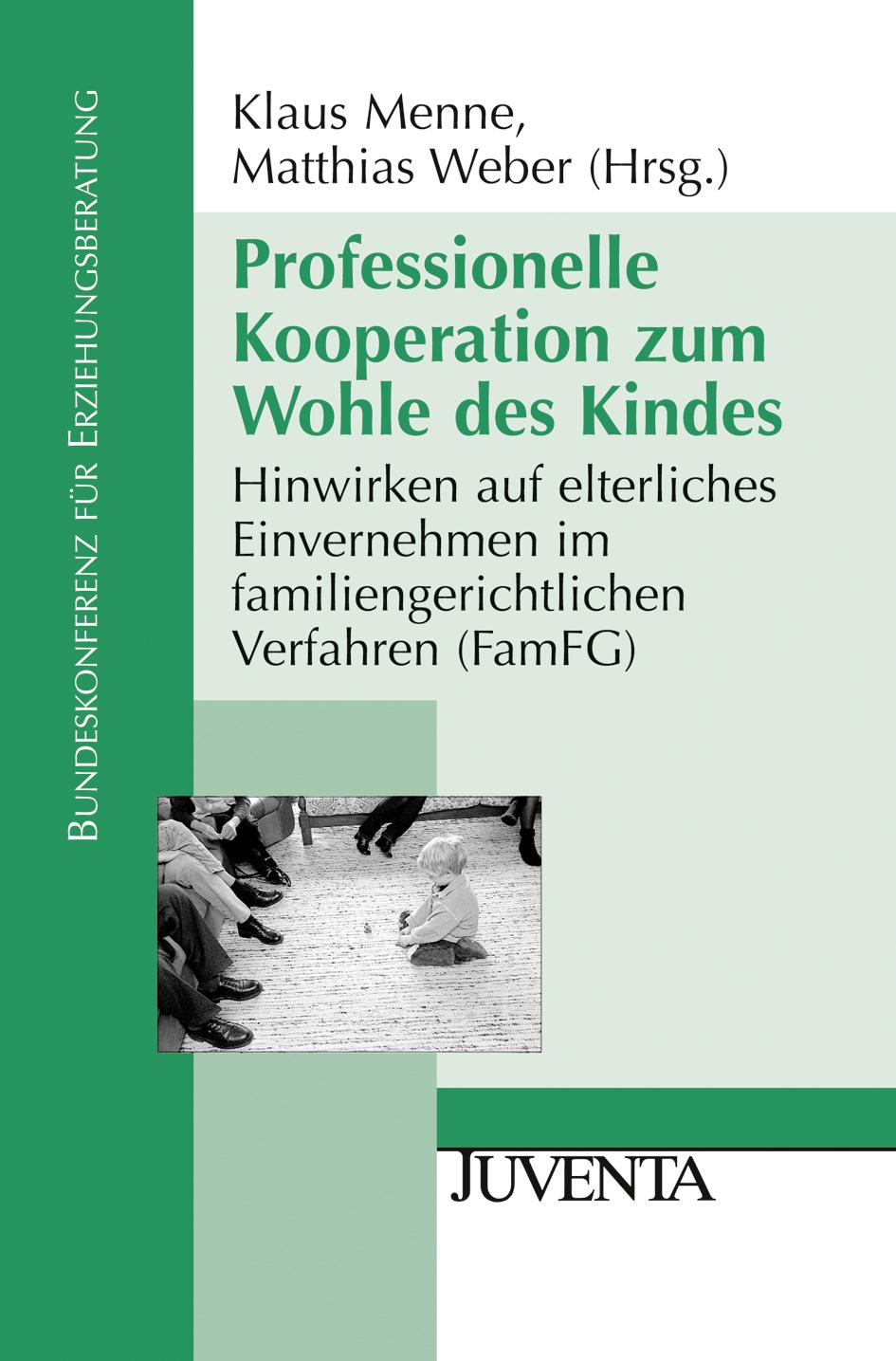 Professionelle Kooperation zum Wohle des Kindes Klaus Menne