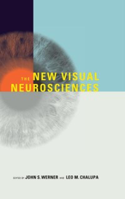 New Visual Neurosciences