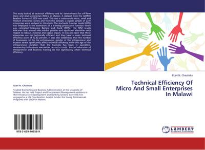 Technical Efficiency of Micro and Small Enterprises in Malawi