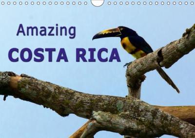 Amazing Costa Rica (Wall Calendar 2018 DIN A4 Landscape) Dieser erfolgreiche Kalender wurde dieses Jahr mit gleichen Bildern und aktualisiertem Kalendarium wiederveröffentlicht.