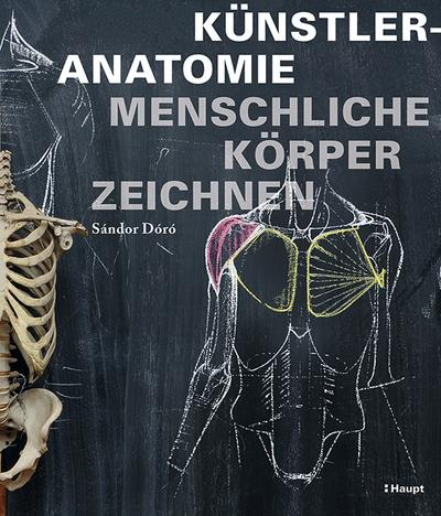Künstleranatomie: Menschliche Körper zeichnen