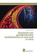 Plastizität von gefäßbildenden Endothelzellen in vivo und in vitro