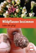 Wildpflanzen bestimmen: Essbar oder giftig?