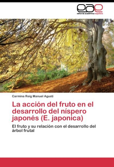 La acción del fruto en el desarrollo del níspero japonés (E. japonica)