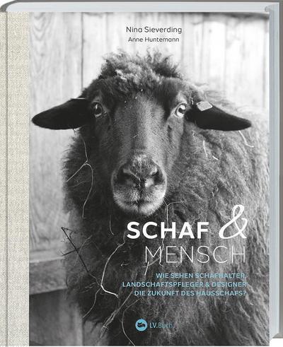 Schaf und Mensch