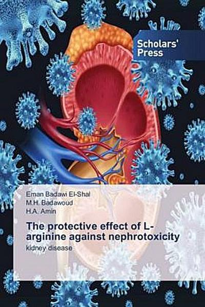 The protective effect of L-arginine against nephrotoxicity