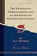 Die Wichtigsten Tierversteinerungen aus der Kreide des Königreiches Sachsen (Classic Reprint)
