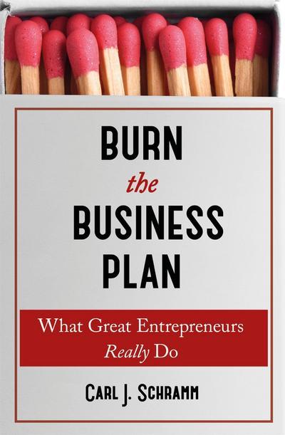 Burn the Business Plan