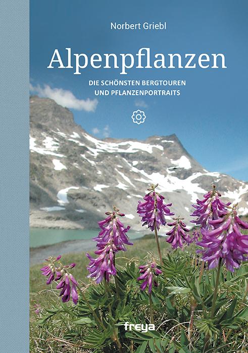 Alpenpflanzen Norbert Griebl