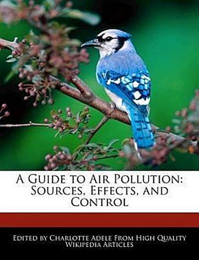 A Guide to Air Pollution: Sources, Effects, and Control