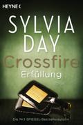 Crossfire 03. Erfüllung