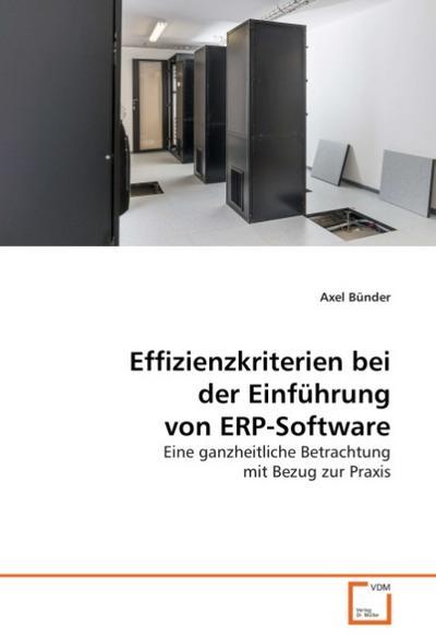 Effizienzkriterien bei der Einführung von ERP-Software