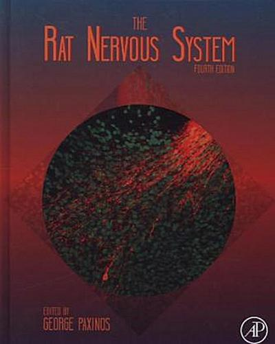 The Rat Nervous System
