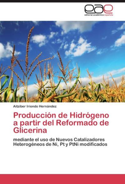 Producción de Hidrógeno a partir del Reformado de Glicerina
