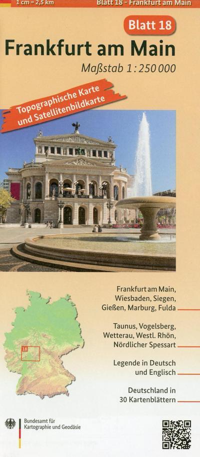 Frankfurt am Main: Umgebungskarte mit Satellitenbild 1:250.000 (TK250 / Topographische und Satellitenbildkarte)