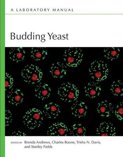 Budding Yeast