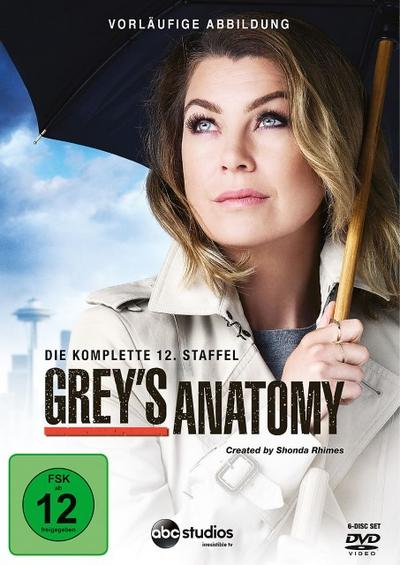 Grey's Anatomy - Staffel 12 DVD-Box