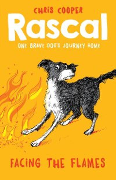 Rascal: Facing the Flames (Rascal)