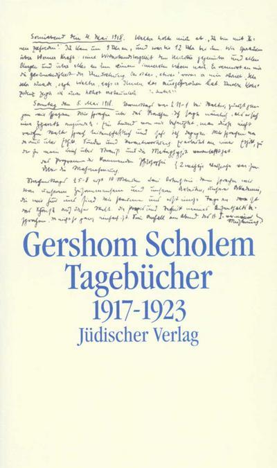 Tagebücher nebst Aufsätzen und Entwürfen bis 1923: 2. Halbband: 1917-1923